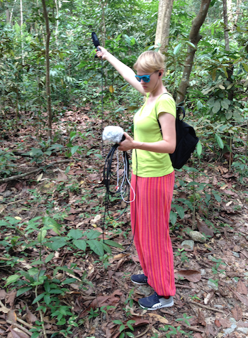 Julia Mihály field recordings at Bukit Timag Nature Reserve